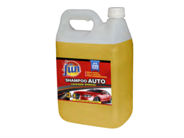 CHAMPO AUTOMOVEL Mr. FUN 5L C/4